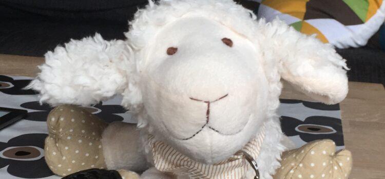 Kirk das Schaf – Logbucheintrag Nr. 4