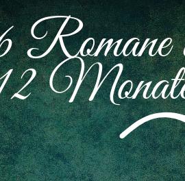 6 Romane in 12 Monaten