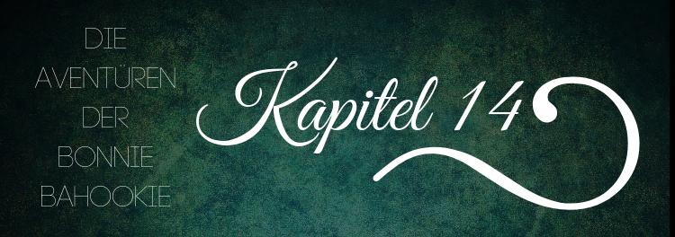 14. Kapitel – Nächtlicher Besuch