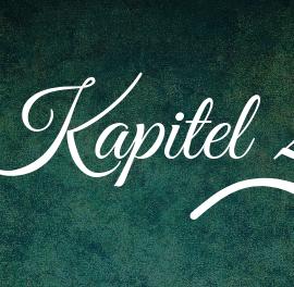 28. Kapitel – Späte Gäste