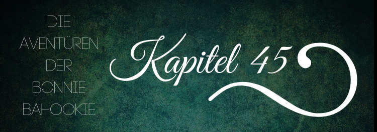 45. Kapitel – Gebrochene Regeln